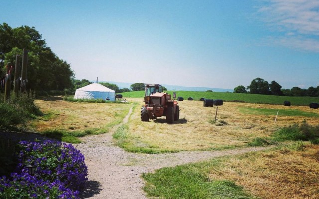 Yurt Meadow Mown and Baled