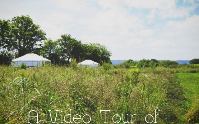 A Tour of the Yurts and Dutch Barn Facilities